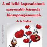 A mi lelki kapcsolatunk szorosabb bármely kicsapongásomnál. J. J. Stalter