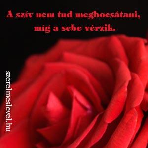 A szív nem tud megbocsátani, míg a sebe vérzik.
