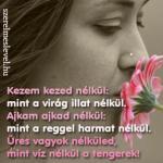 Kezem kezed nélkül: mint a virág illat nélkül. Ajkam ajkad nélkül: mint a reggel harmat nélkül. Üres vagyok nélküled, mint víz nélkül a tengerek!