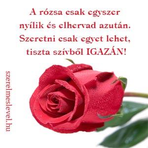 A rózsa csak egyszer nyílik és elhervad azután. Szeretni csak egyet lehet, tiszta szívből igazán!