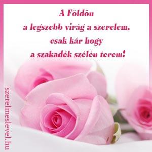 A Földön a legszebb virág a szerelem, csak kár hogy a szakadék szélén terem!