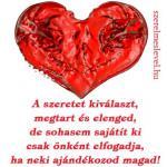 A szeretet kiválaszt, megtart és elenged, de sohasem sajátít ki csak önként elfogadja, ha neki ajándékozod magad!