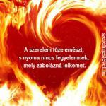 A szerelem tüze emészt, s nyoma nincs fegyelemnek, mely zabolázná lelkemet.