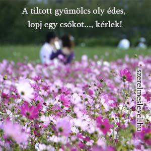 A tiltott gyümölcs oly édes, lopj egy csókot..., kérlek!