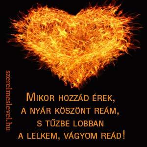 Mikor hozzád érek,  a nyár köszönt reám,  s tűzbe lobban  a lelkem, vágyom reád!