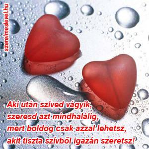 Aki után szíved vágyik, szeresd azt mindhalálig, mert boldog csak azzal lehetsz, akit tiszta szívből igazán szeretsz!